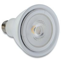 Contour Series PAR30 2700K, 800lm LED Lamp
